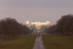 Windsor-walk